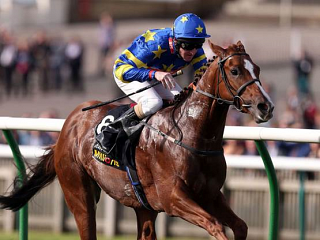 Miracle of Medinah is a Star
