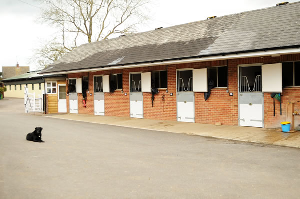 Rowdown Stables yard